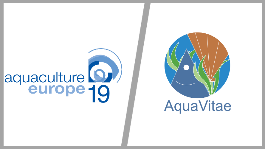 AquaVitae presentation in Aquaculture Europe