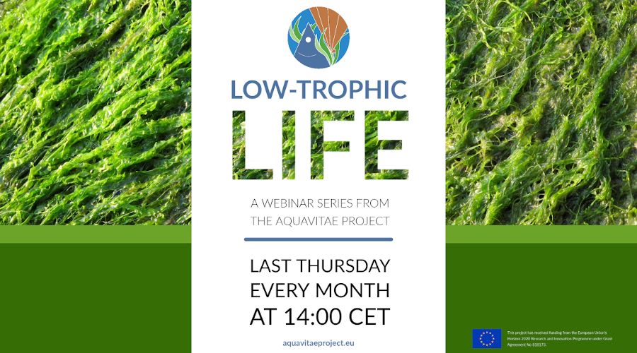 "Low Trophic Life Webinar: ""Seaweeds as key components in pond IMTA systems"""
