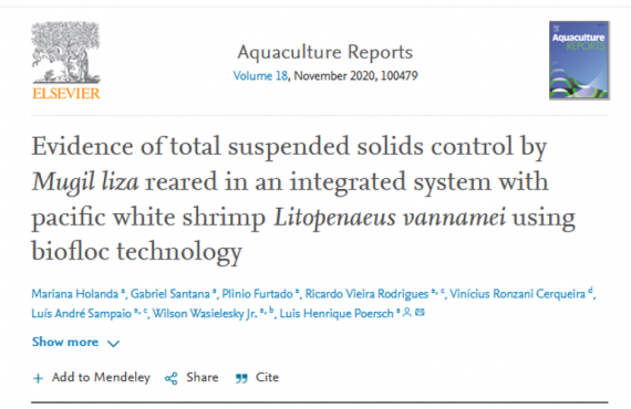 Evidence of total suspended solids control by Mugil liza reared in an integrated system with pacific white shrimp Litopenaeus vannamei using biofloc technology