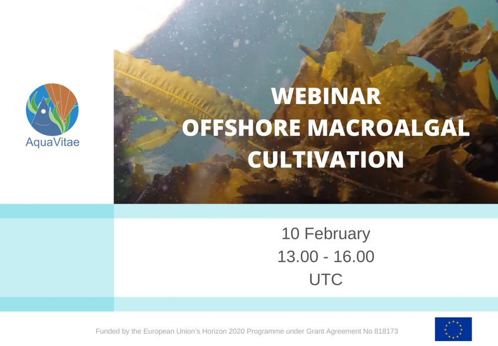 Case study meeting: Offshore macroalgae cultivation