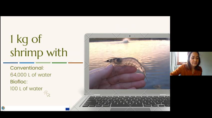 AquaVitae webinar Advances in IMTA and Biofloc research at UFSC.