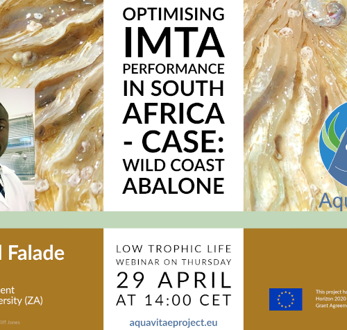 """Low Trophic Life Webinar: """"Optimising IMTA performance in South Africa – Case: Wild Coast Abalone"""""""