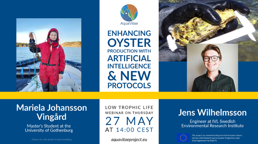 """Low Trophic Life Webinar: """"Enhancing oyster production with artificial intelligence & new protocols"""""""